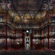 christian voigt - Morgan Library III H 160 cm x B 150 cm Edition 12 DISTANCE FRAME, TULIPWOOD, BLACKFRAME FRAME